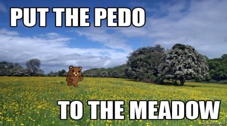 Pedobear meadow