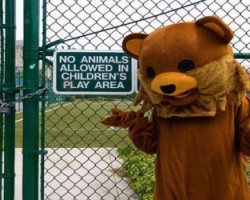 Pedobear children play area