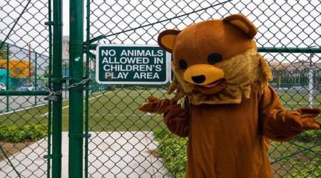 Pedobear children play area