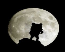 Pedobear moonlight silhouette