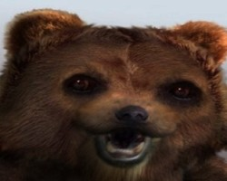 Pedobear real photo