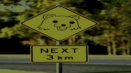Pedobear warning road sign