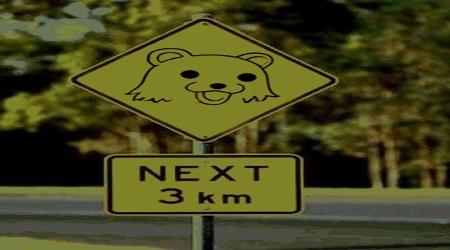 Pedobear warning road sign