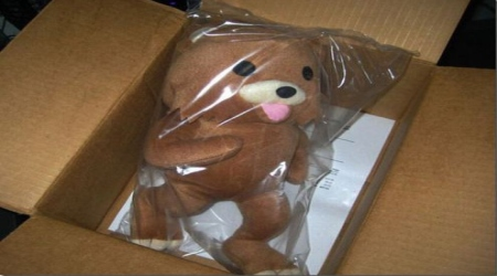 Pedobear toy inside box