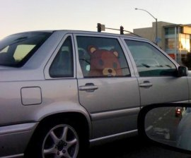 Pedobear inside car