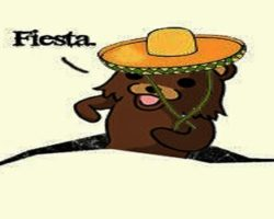 Pedobear Mexican fiesta